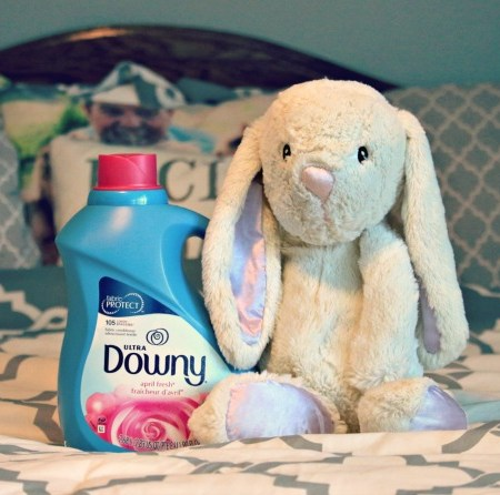 Ultra-Downy-Review