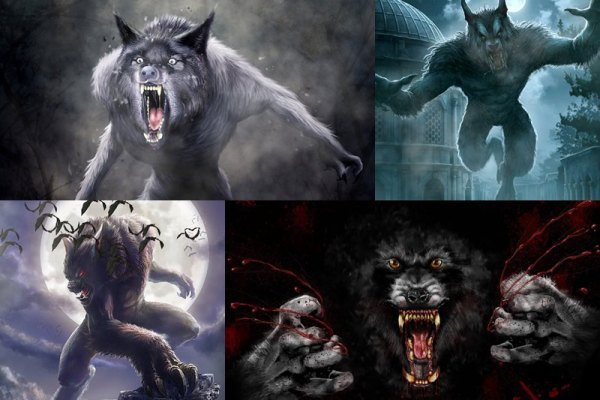 Werewolf Animated Wallpaper Preview