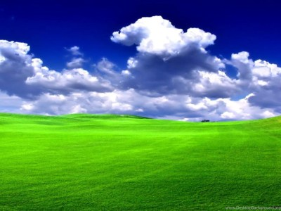 Windows Xp Bliss Wallpapers Hd Desktop Background