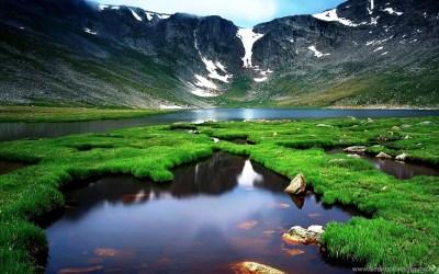 Nature Wallpapers High Resolution Green Best HD Desktop Wallpapers ... Desktop Background