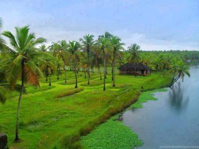 Kerala Nature Pictures Widescreen HD Wallpapers Desktop Background