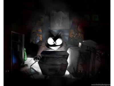 Wallpapers Hacker Hd The Unix Funny Cat Photos For 800x600 ... Desktop Background