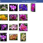 Galerías Facebook para WIndows 8.1