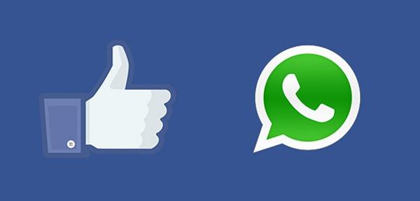 WhatsApp 500 millones