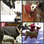 Dog Sweater to Knit-Crochet Roundup Part 2