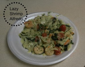lazy shrimp alfredo