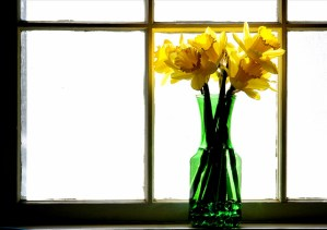 Inspired Spring Decor Getting Your Home and Garden Ready For the New Season