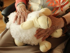 Growing Old With Grace: Taking Care Of Your Elderly Loved Ones