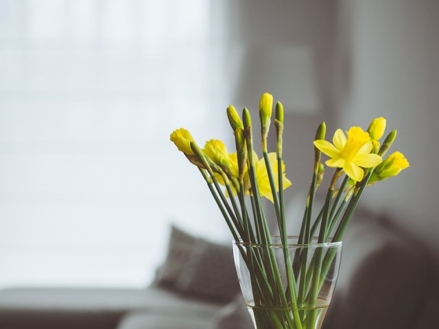 Give Your Home The Facelift It Deserves This Spring