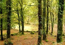 Atividades ao ar livre na Serra da Estrela