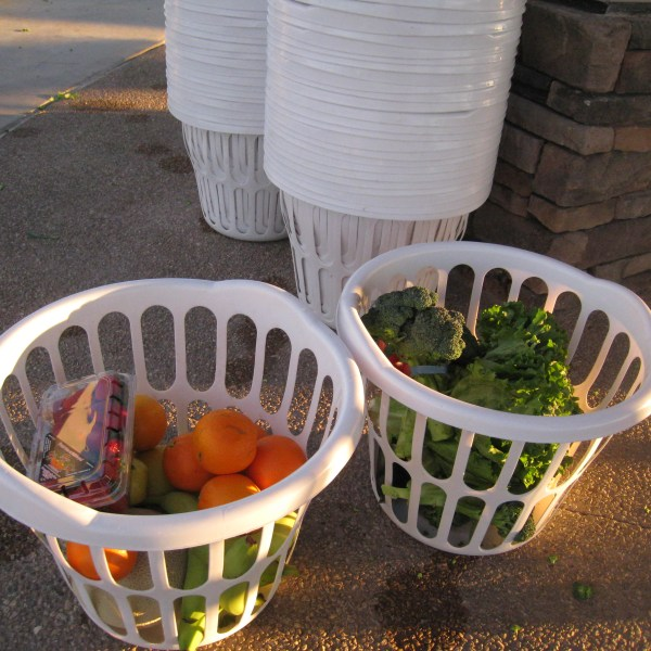 Bountiful Baskets, Vegas Blog, Vegas Family