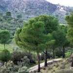 Sierra de Andujar en Jaén