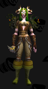 Leather Transmog - Crown of Malorne - Night Elf Druid