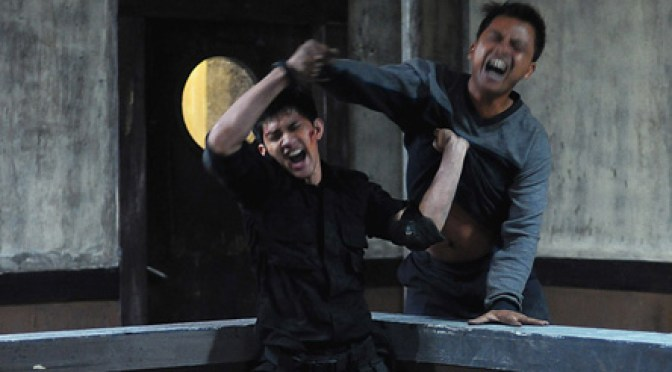 The Raid, movie