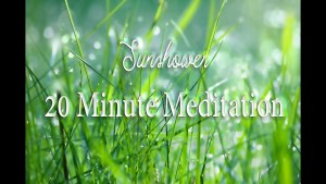20 Minute Meditation ~ Rain Sounds