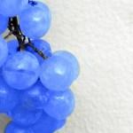 blue_grapes-1920x1440