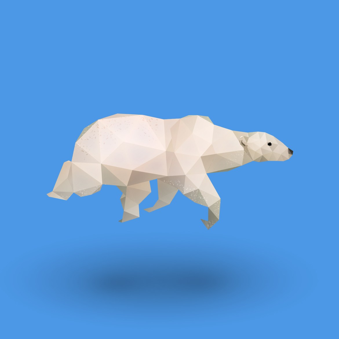 diana-dachille-polar-bear-dianas-animals