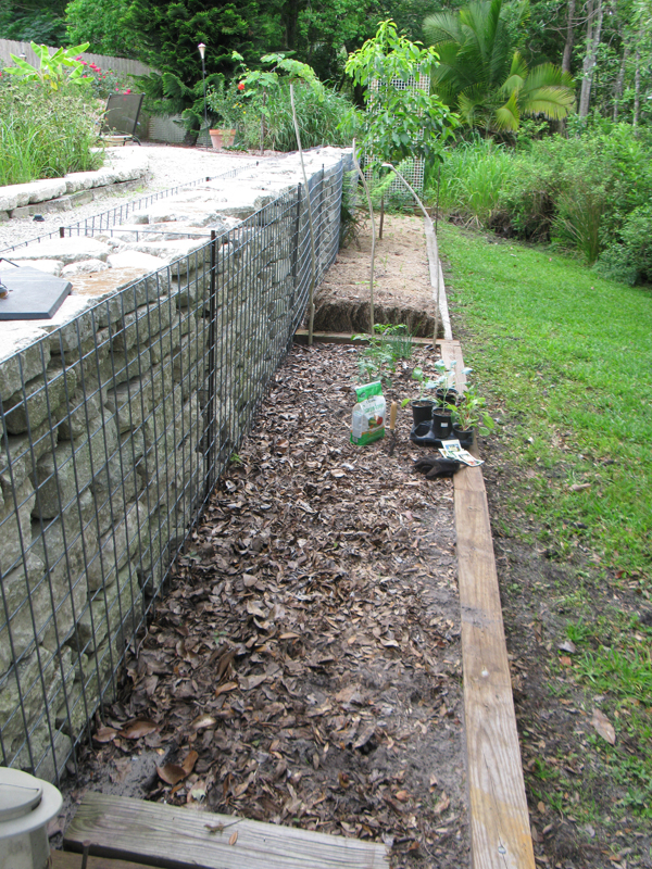Backyard Ideas for Gabion Walls Diane and Dean DIY