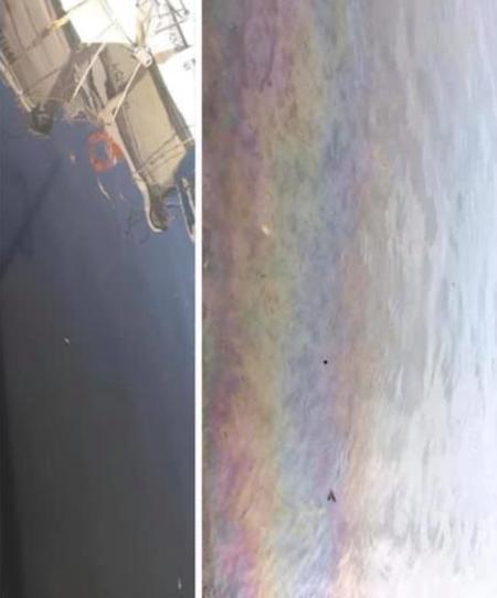 Vox pide investigar a Esamur como posible responsable de la muerte de los peces en el Mar Menor