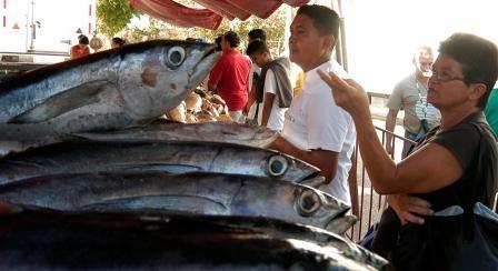 Los trabajadores accedieron a alrededor de dos mil kilos de pescados
