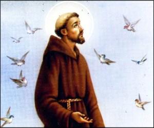 san-francisco-asis