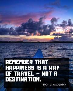 roy-goodman-travel-quote-480x600