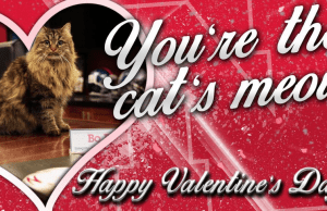 Huskers Valentines Photo