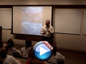 Organizational Structure Seminar Sample Video