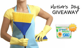 Mother's Day Giveaway - Month of Housecleaning!