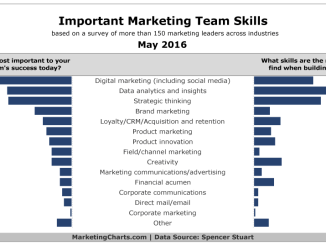 Important Marketing Team Skills May 2016