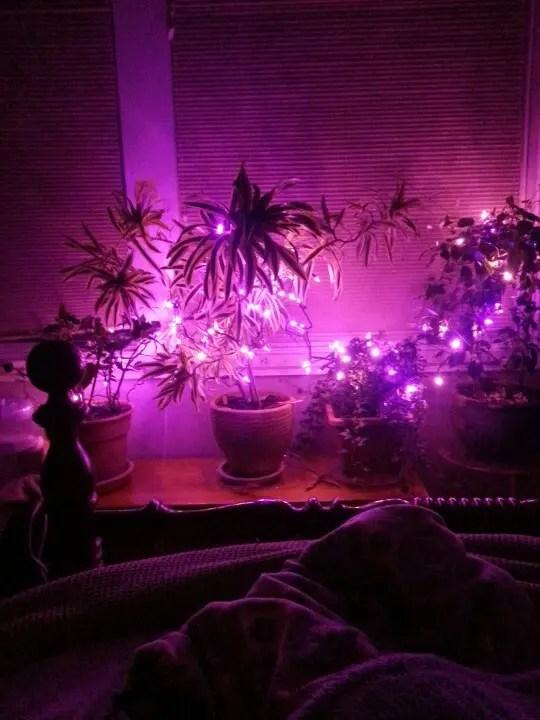 romantic bedroom lighting ideas for t