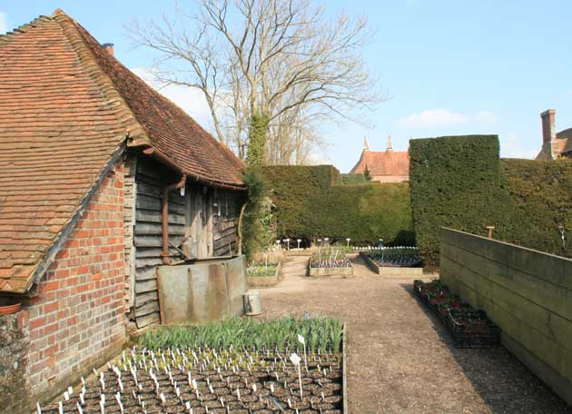 Great_dixter_54