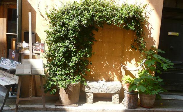 simple-front-door-garden