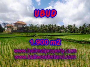 Tanah di Bali dijual murah 1.900 m2 di Dekat sentral Ubud