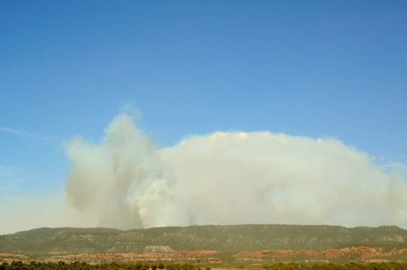 The Assayii Lake Fire from the Crystal, N.M., Chapter, on the Navajo Reservation, where community members were informed by the Southwest Incident Management Team that the fire was at 11,000 acres at about 1:30 p.m. on June 16, 2014. Photo by Marley Shebala