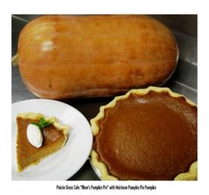 Prairie Grass Cafe Pumpkin Pie with Heirloom Pumpkin Pie low res et