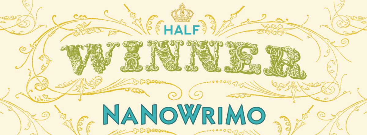 Tips about writing a Novel for NaNoWriMo