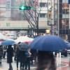 春日部は雨です