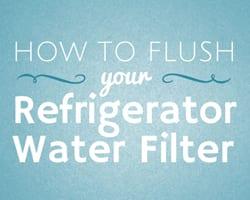 Flush Filter