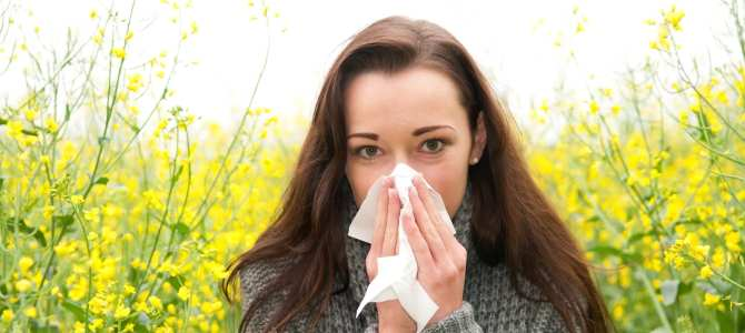 Allergy Relief Guide