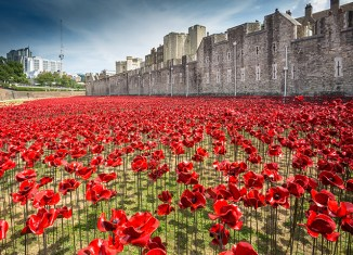 Tower of London, First World War, poppies, anniversary, art, memorial