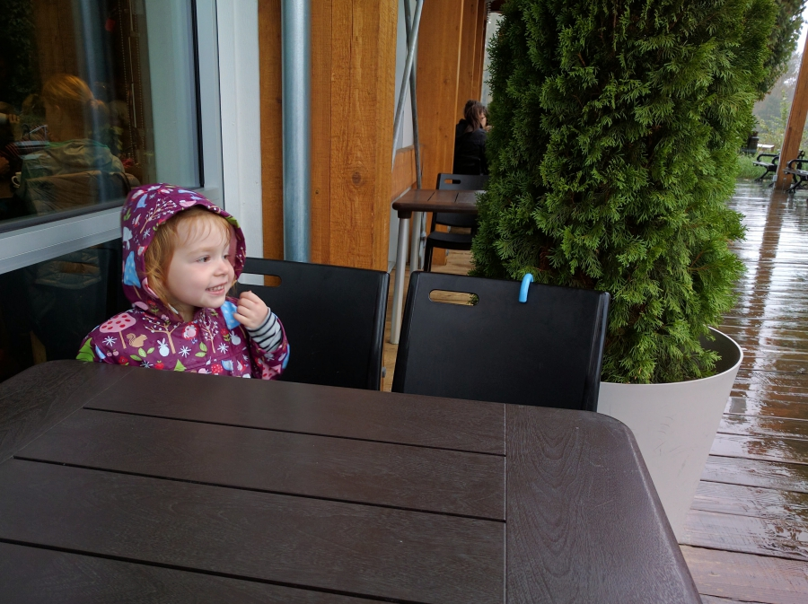 wordless wednesday Fort Langley