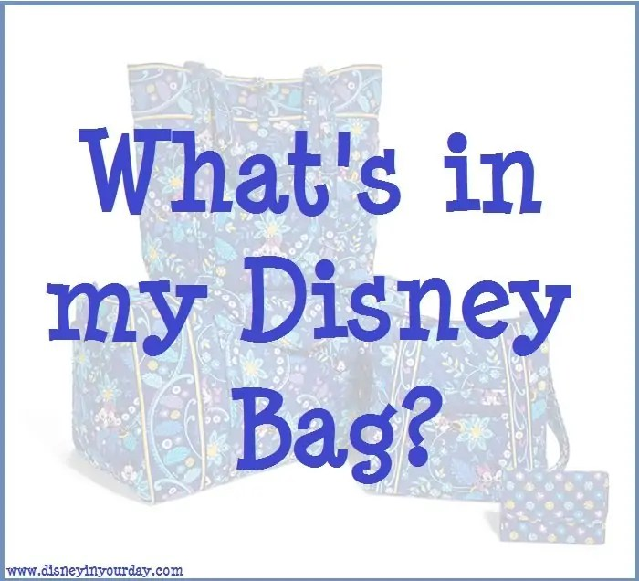 Can You Bring Backpacks Into Disney World: What's In My Disney Bag?