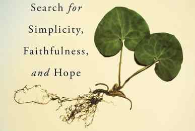 Renewable: One Woman's Search for Simplicity, Faithfulness, and Hope by Eileen Flanagan