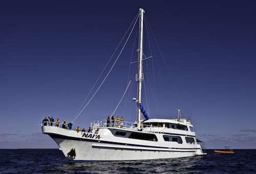 Nai'a - by far the best liveaboard to explore Fiji with!
