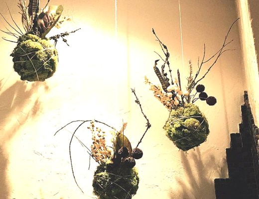 How to Make Hanging Terrariums