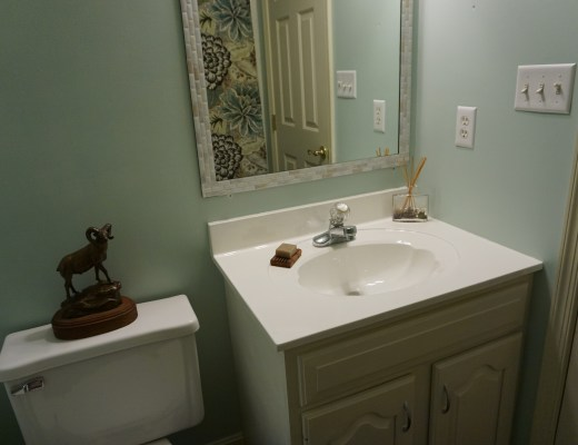 Bathroom Renovation on a Budget with Homax