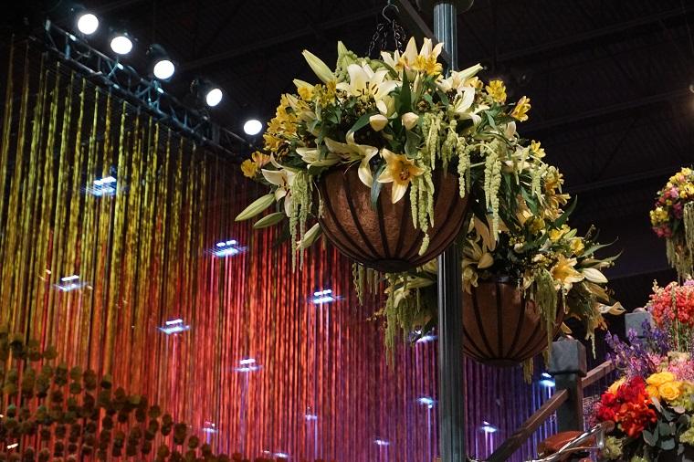 Hanging Flower Baskets at Flower Show