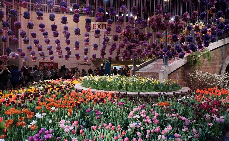 Garden And Landscape Trends From The 2017 Flower Show Diy Home Health