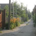 Home Security – Alleyway Access Problems